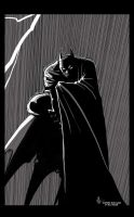 The Dark Knight by VanOxymore