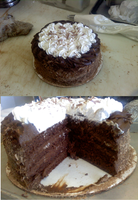Chocolate Mousse Chiffon Cake by XxNaomi-LukarixX