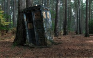 forest tardis doctor who 1920x1080 wallpaper Art H by goredude
