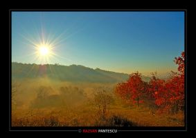 Autumn colors 6 by razvanx