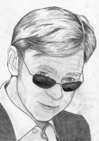 Horatio Caine by Steve-Nice