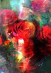 A blend of roses by robinweatherall