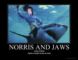 Chuck Norris Riding Jaws by Freakster00f