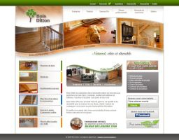 Bois Ditton website by neverdying