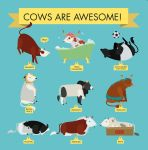 Cows Are Awesome by ysyra