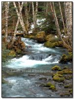 Spring Thaw by LoneWolfPhotography