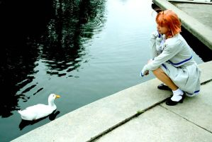 Ahiru Means Duck by evaliation
