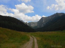 Mala Laka Valley (Tatra Mountains) by MaRyS90
