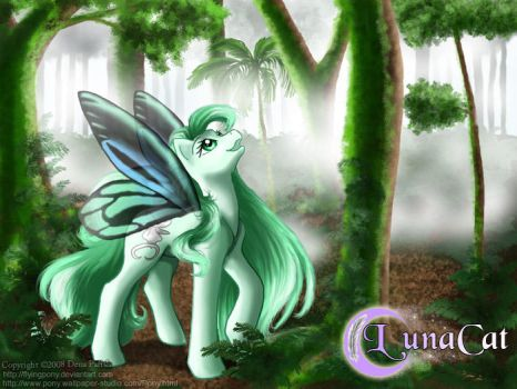 Cloud forest by FlyingPony