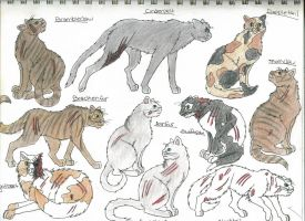 Members of ThunderClan 4-takhi by StarClan