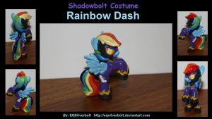 Shadowbolt Costume Rainbow Dash by EQSilverbolt
