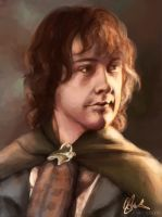Peregrin Took by thecapturedspy