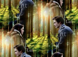 Bella and Edward 2 by katie365