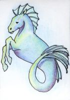 ACEO - Spiny Hippocampus by meihua
