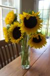 Sunflower Bouquet I by LDFranklin