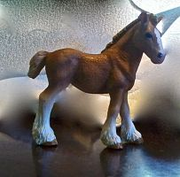 Clydesdale by skydancer792007