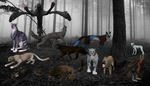 The Cryptid Collection by AquaChocobo