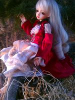 New BJD clothes - Little Red Riding Hood by Selkie33