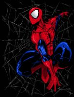 Spider Man Colors by Crausse
