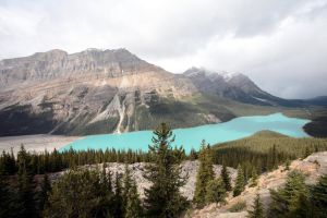 Canada - Peyto Lake by puppeteerHH