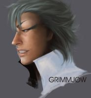 Grimmjow Without Titles by propensity