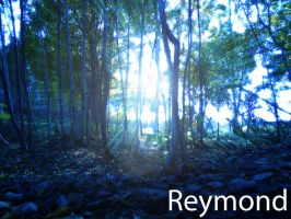 Forest Of Life by Reymond-P-Scene