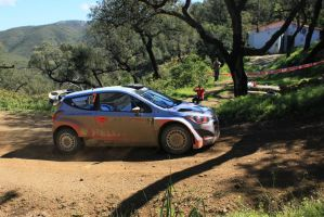 2014, Thierry Neuville, Hyundai, Loule, Portugal by F1PAM