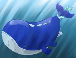 Wailord, Lord of the Sea by MichaelBeckett