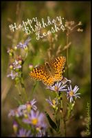 May Life Give You by kayaksailor
