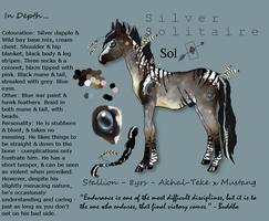 .:Silver Solitaire:. by spookykitty123