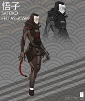 Satoko: Feli Assassin by FutureFavorite