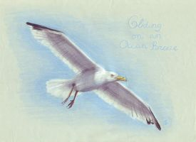 Gliding on an ocean breeze by Inheritance
