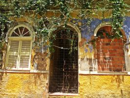Not all bricks can close some windows by BarbaraLambert