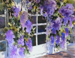 Whisteria... by Tialegria