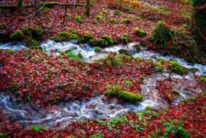 And Within Red. A River. II by Aenea-Jones