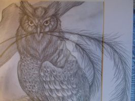 Owl of Beauty (finished) close up 3 by TheArraStar