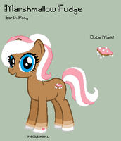 MLP - Marshmallow Fudge Reference Sheet by porcelian-doll