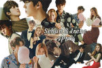 EXO Sehun and Red Velvet Irene PNG Pack {Ceci} by kamjong-kai
