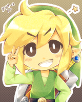 .: Little Link Smile :. by Radical-Rhombus-XD