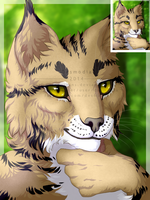 150x200 Avatar for Haku [commission] by DesmodiaDesigns