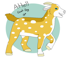 Attell Reference by Miiroku