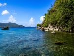 Guadelupe1 by woodsman91
