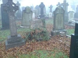 Foggy at the cemetery 15 by rudeturk