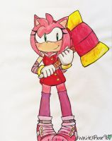 Sonic Boom: Newcomer Amy Rose! by WhiteXRose96