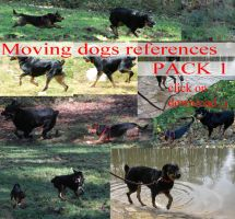 Moving Dogs references PACK 1 by whynotastock