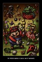 Super Mario 2 Wars: Subcon TK by JimmyHapa
