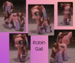 MLP: Robin Gail by noonetells
