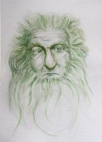 Balin by HelevornArt