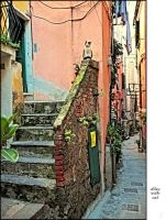 Alley with cat by BaciuC