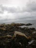 Rocks and the Sea by tinuvielluthien